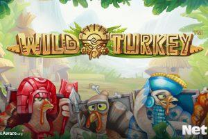 wild turkey animal themed slot